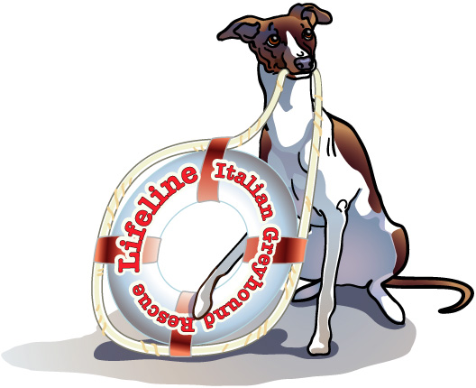 LifelineItalianGreyhoundRescue's Avatar