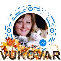 KataVukojevicSesar's Avatar