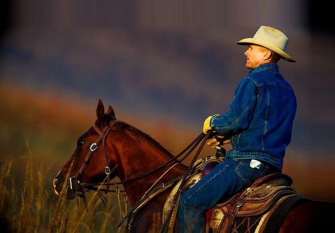 CowboyDanHandyMan's Avatar