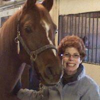 horsegal173's Avatar
