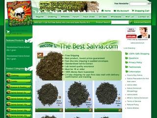 The Best Salvia